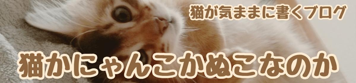 猫かにゃんこかぬこなのか